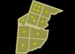 Oio Vivo - mapa maslinika